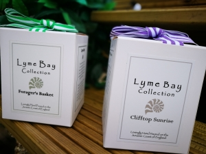 Lyme Bay Collection